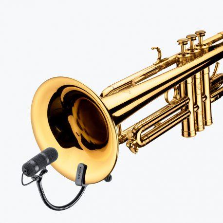 DPA dvote 4099 on Trumpet_11